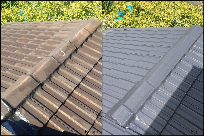 professional roof painting, before and after.